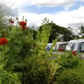 Manor Wood Country Caravan Park