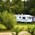 Holmsley Caravan Park and Campsite