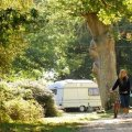 Hollands Wood Caravan Park and Campsite