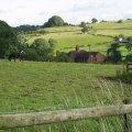 White Cliff Farm