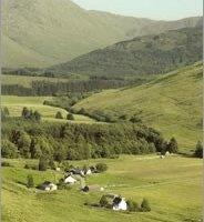 Moyle Park Campsite