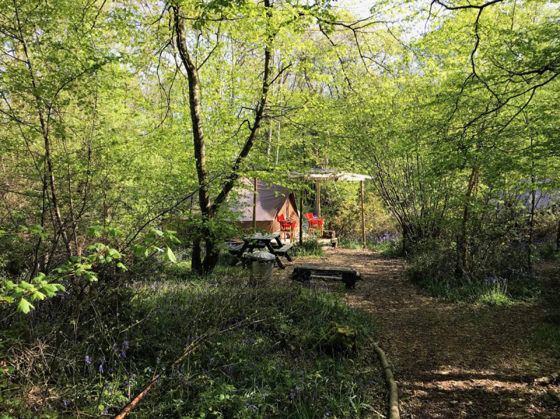 Secluded bell tent in the woods