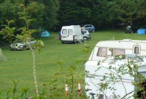 Brook Lodge Farm Camping & Caravan Park in Somerset
