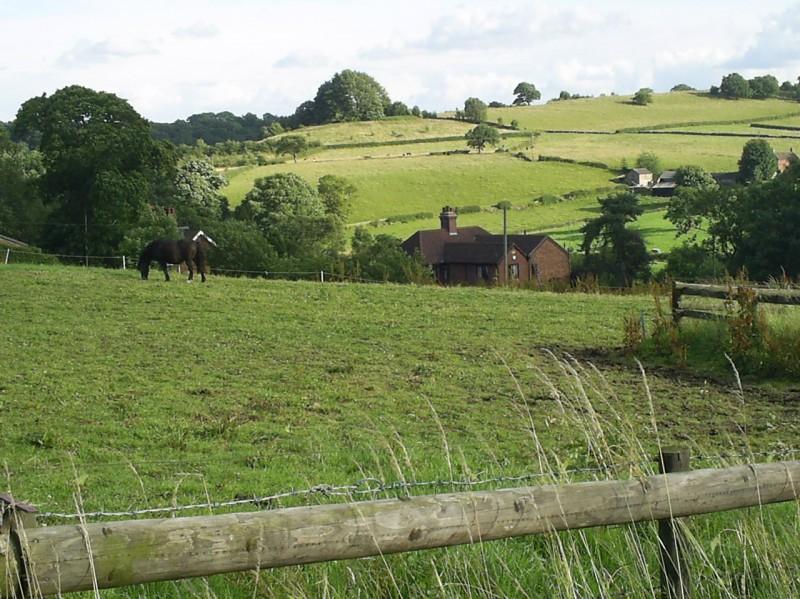 Farm Cliff