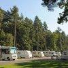 Thetford Forest Caravan Club Site