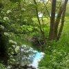 Radford Mill Farm