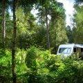 Setthorns Caravan & Camping Site