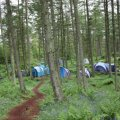 Marthrown Camping