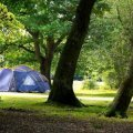 Ashurst Caravan Park and Campsite