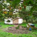 Yurt glamping in Somerset at Woodland Escape