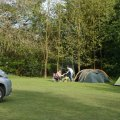 Dogwood Camping