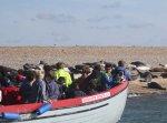 Bishops Boats Seal Trips
