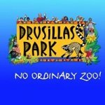 Drusillas Zoo Park
