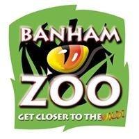 Campsites close to Banham Zoo