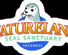 Campsites close to Natureland Seal Sanctuary