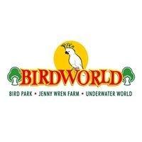 Campsites close to Birdworld