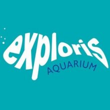 Campsites close to Exploris Aquarium