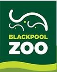 Campsites close to Blackpool Zoo