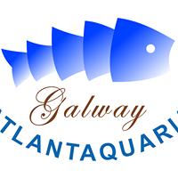 Campsites close to Galway Atlantaquaria
