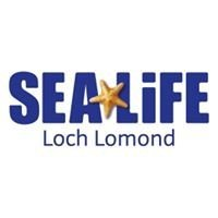 Campsites close to Loch Lomond SEA LIFE Centre