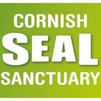 Campsites close to Cornish Seal Sanctuary