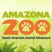Campsites close to Amazona Zoo