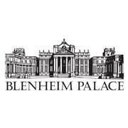 Campsites close to Blenheim Palace