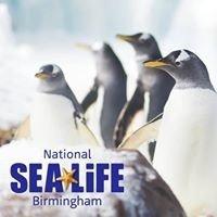 Campsites close to National Sea Life Centre