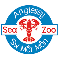 Campsites close to Anglesey Sea Zoo