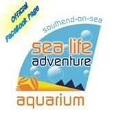 Campsites close to Sea Life Adventure