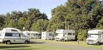 The Old Mill Caravan Park Brodie