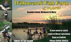 WillowCroft Fisheries and Caravan Park