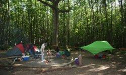 Camping Badgells Wood