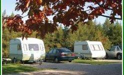 Longnor Wood Caravan & Camping