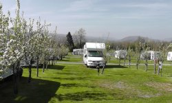 Blossom Touring Caravan Park