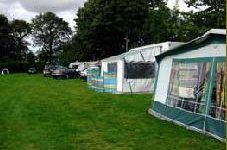 Pinewood Lodge Camping and Caravan Park