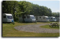 Brynawelon Touring Caravan and Camping Park