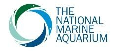 National Marine Aquarium