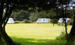 Longbeech campsite