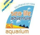 Sea Life Adventure