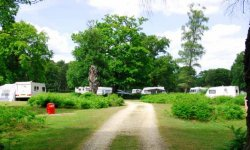 Matley Wood Campsite