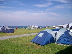 Trawsdir Touring Caravan & Camping Park