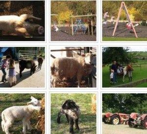 Farmer Giles Farm - NOW CLOSED