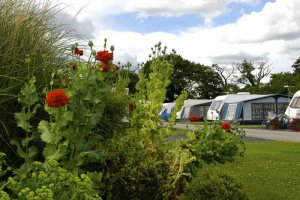 Manor Wood Country Caravan Park