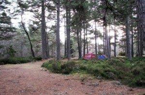 Rothiemurchus Camp & Caravan Park