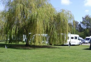 The Willows Caravan Park and CL