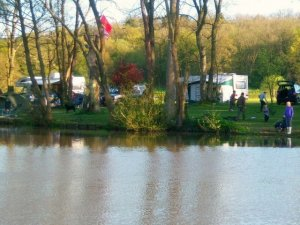 Henfold Lakes Fisheries