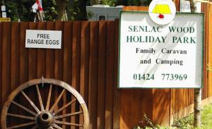 Senlac Wood Campsite