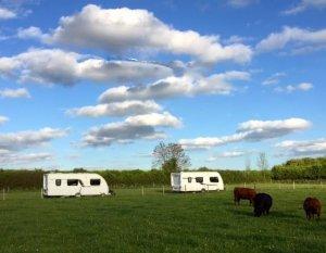 Ryecroft Farm