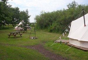 Crooked Willow Eco Campsite